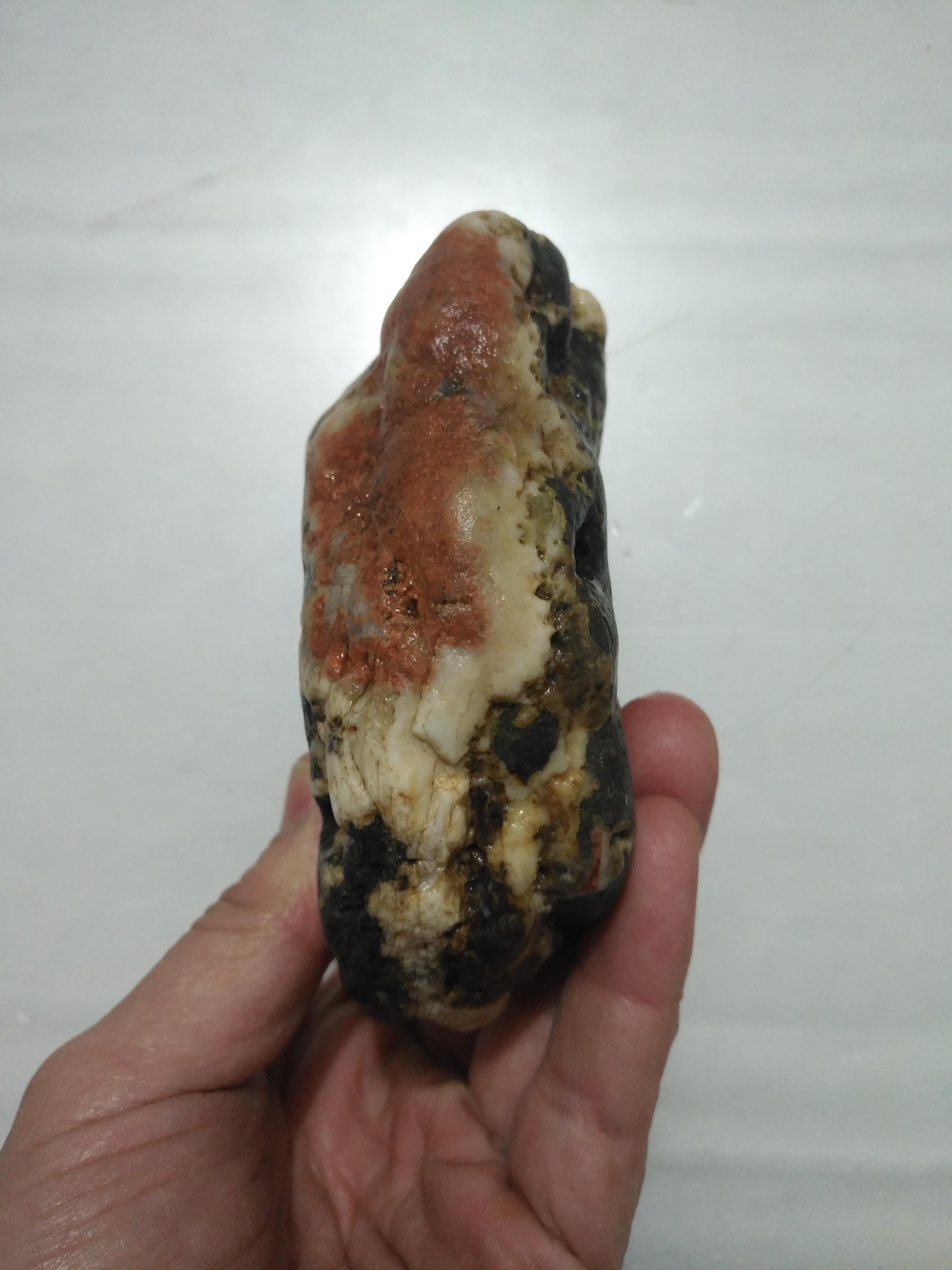 红梅(本店购买150元以上者赠品)